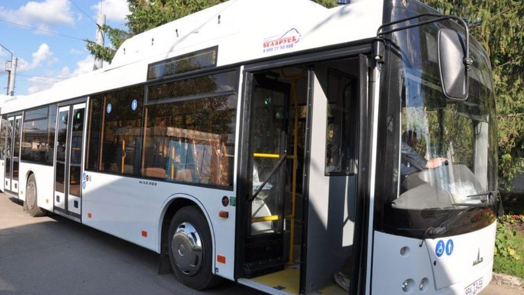 В Тамбове пустили дополнительные дачные автобусы