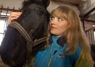 Волонтёры из Тамбова спасли пензенских лошадей от бойни