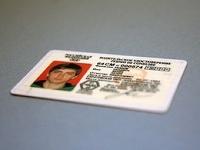 Россиянам разрешат сдавать на права в автошколах