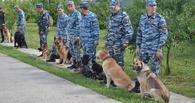 В Тамбов съехались служебные псы со всей области