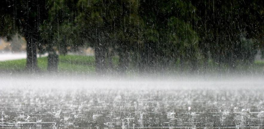 В Тамбовской области ожидаются дожди и гроза
