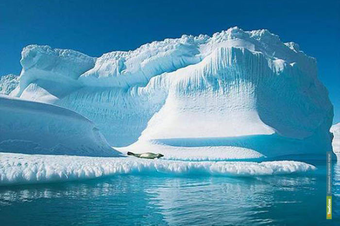 Арктика растает к 2100 году