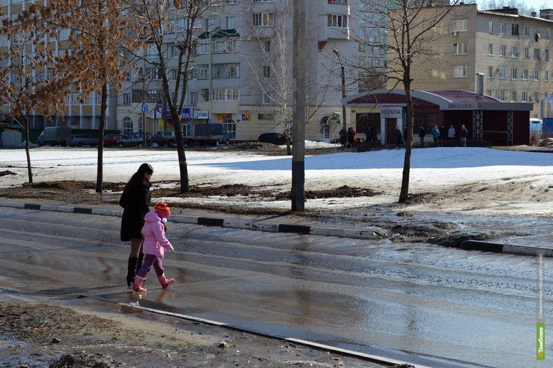На дорогах Тамбовщины пострадали 30 детей
