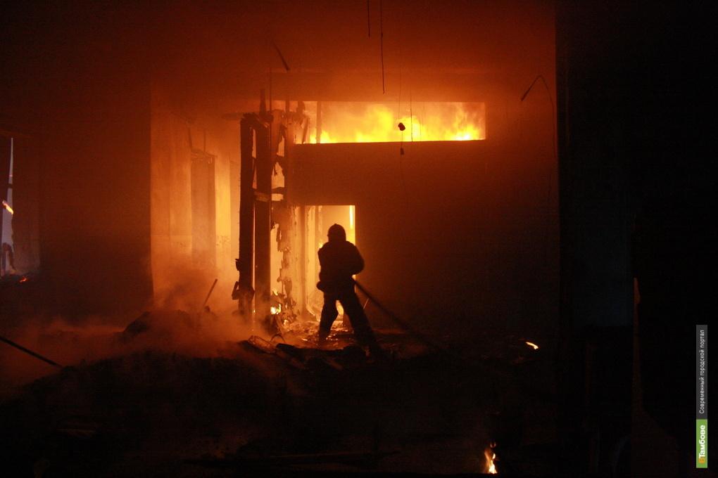 В пожаре на Тамбовщине погиб пенсионер