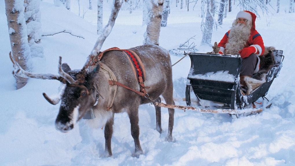 Праздник к нам приходит! Дедушка Мороз проедет на санях по Тамбову