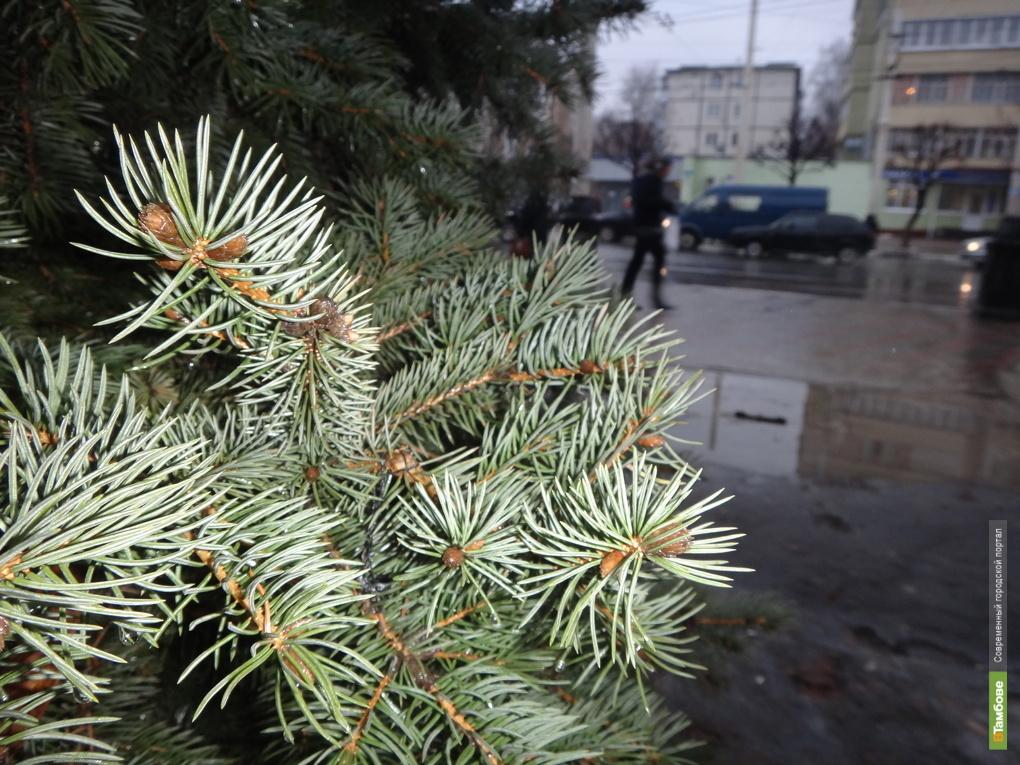 Дождь мешает украшать Тамбов к Новому году