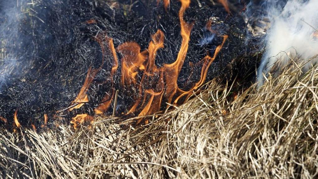 Очевидцы: на территории завода «Пигмент» 4 июля было возгорание