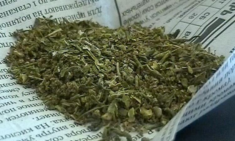 Полицейские задержали с наркотиками жителя села Бокино