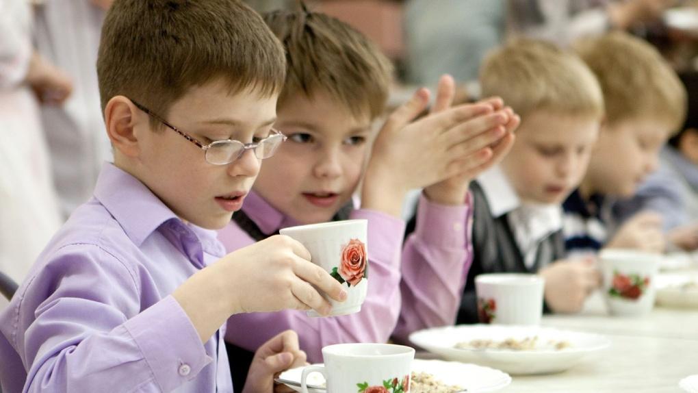 Школьников и детсадовцев в Рассказове кормили неправильно хранившимися мясом и «молочкой»