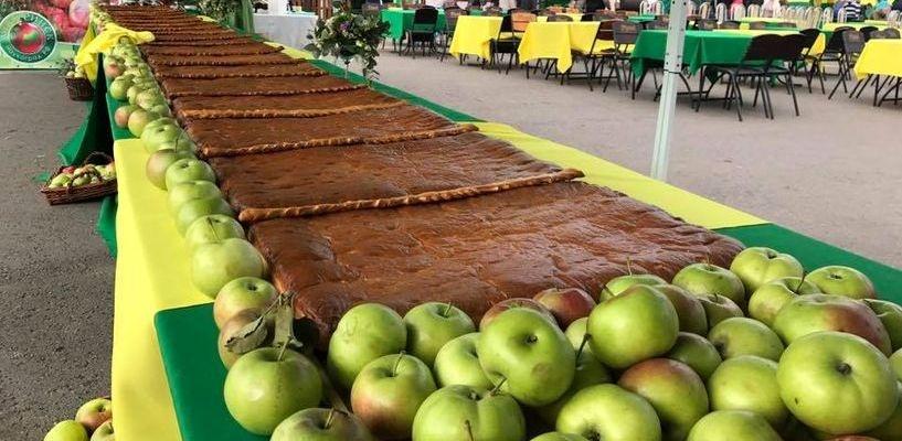 День садовода: гости наукограда попробовали 10-метровый яблочный пирог