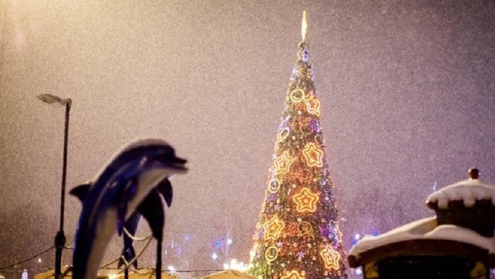 «Новогоднюю поляну» у «Кристалла» украсят элементами с Покровской ярмарки
