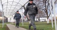 Молодой житель Мичуринска ответит перед судом за 11 автокраж