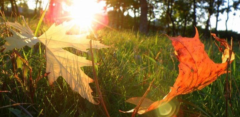 Лето скоро закончится: синоптики поделились прогнозами