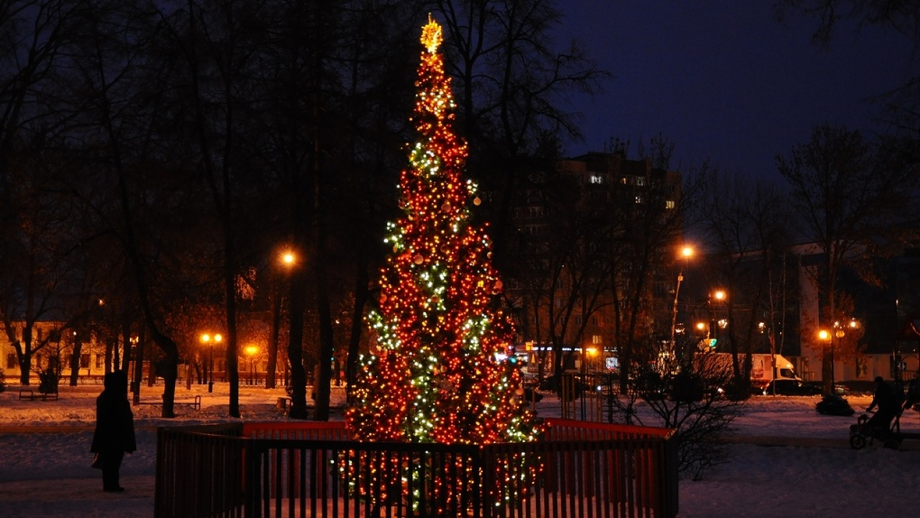 В Тамбове появится 108 елок