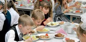 На питание школьников в 2017 году потратят почти полмиллиарда рублей