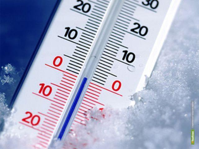 В Тамбове ожидаются первые заморозки