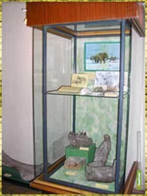 Тамбовские музейщики оживили мордовские эпосы