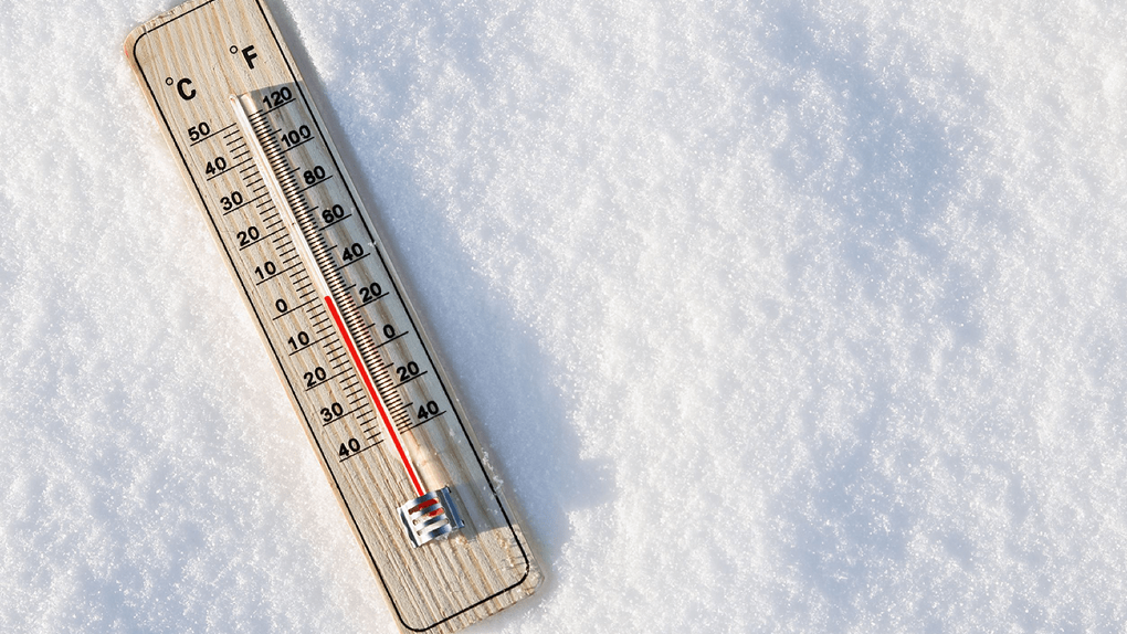 Прошедшее зимнее воскресенье стало самым тёплым в истории Тамбовской области