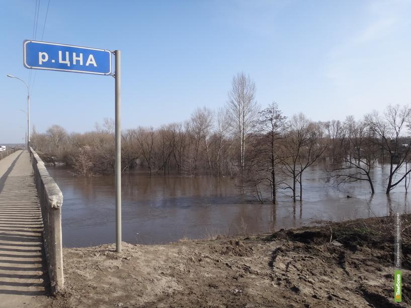 На тамбовских реках началось повышение уровня воды