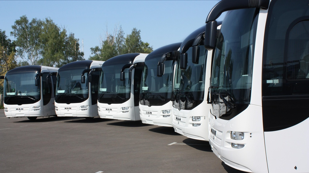 Слишком много ДТП: в области усилят контроль за пассажирскими перевозками