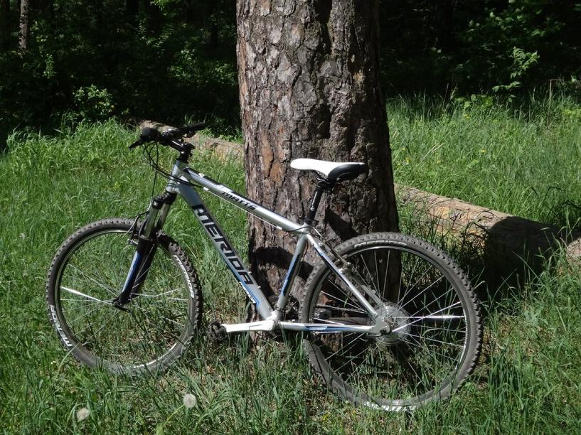 Майские праздники вышли «урожайными» на угоны велосипедов и мотоциклов
