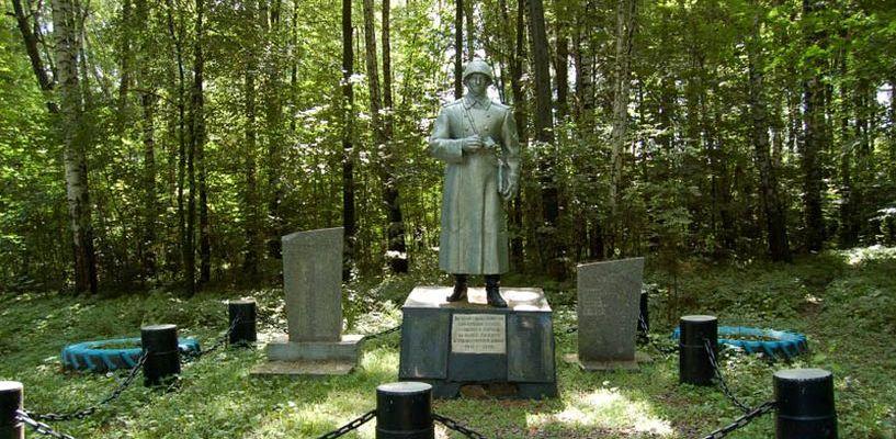Житель Мичуринска посадил деревья у братской могилы в Подмосковье