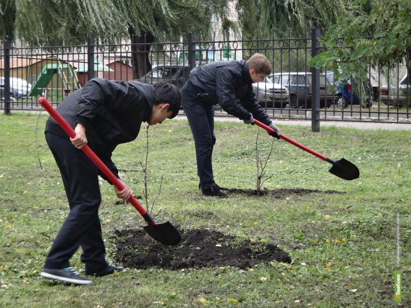 В Тамбове высадили 460 деревьев