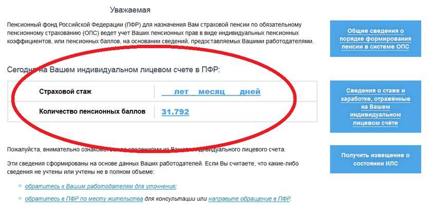 как и где посмотреть сумму на страховом свидетельстве ручки камнями Сваровски