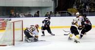 Тамбовские хоккеисты проиграли на выезде