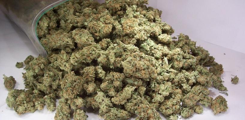 За сутки полицейские пресекли 4 факта незаконного оборота наркотиков