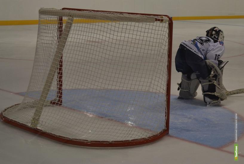 На городских хоккейных коробках появятся новые игровые ворота
