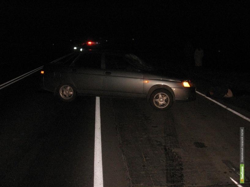 Два пешехода погибли на тамбовских дорогах