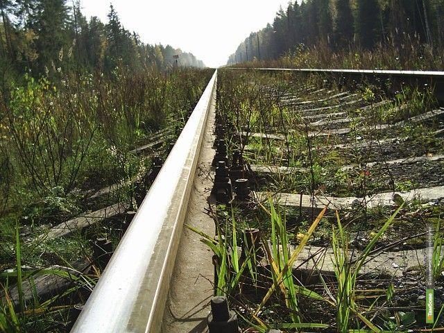 Тамбовчане попались на краже железнодорожных рельсов