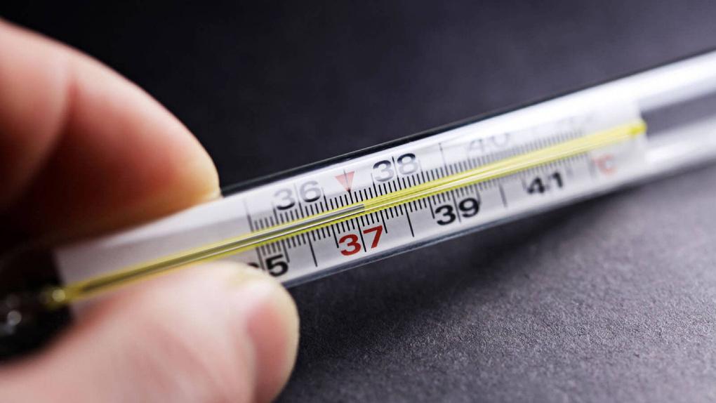 В Тамбовской области зафиксировали свиной грипп у младенца