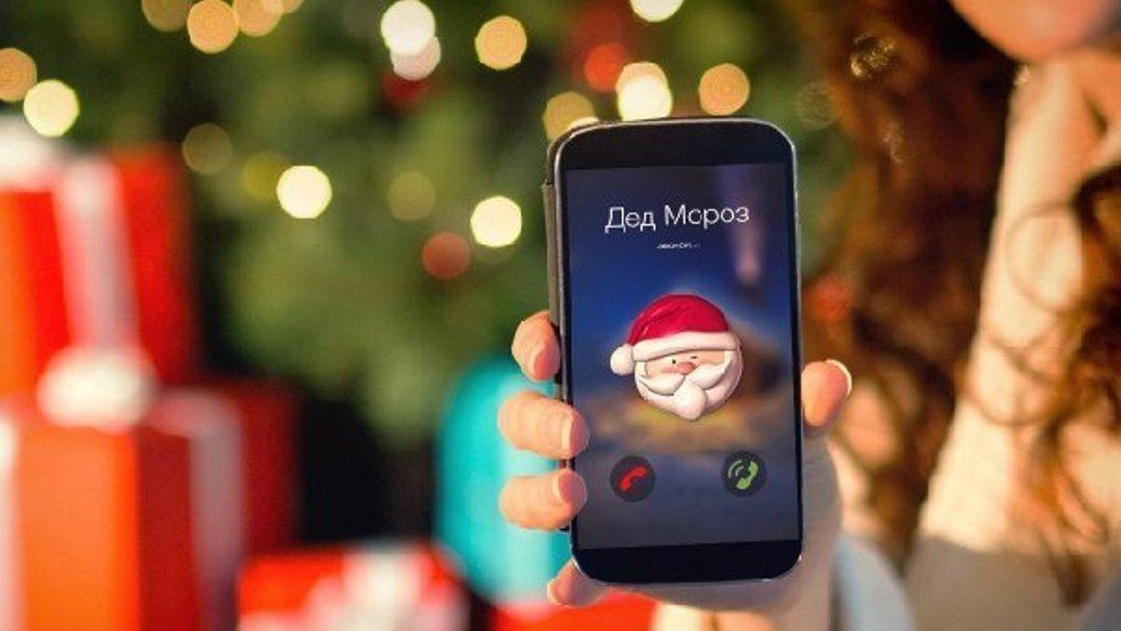 Волшебная совиная почта: в этом году письма Деду Морозу будут отправлять по воздуху