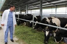 В Уваровском районе появится крупный молочный комплекс