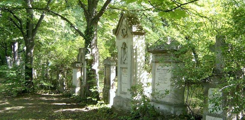 Данные о тамбовских кладбищах оцифруют