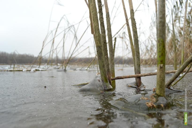 Тамбовский ледостав унёс жизнь рыбака