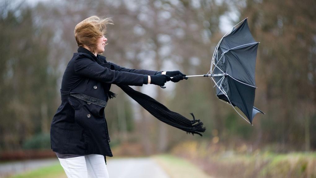 Сегодня в Тамбовской области ожидаются гроза и сильный ветер