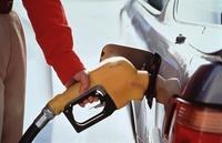 В России предлагают бензин выдавать по талонам