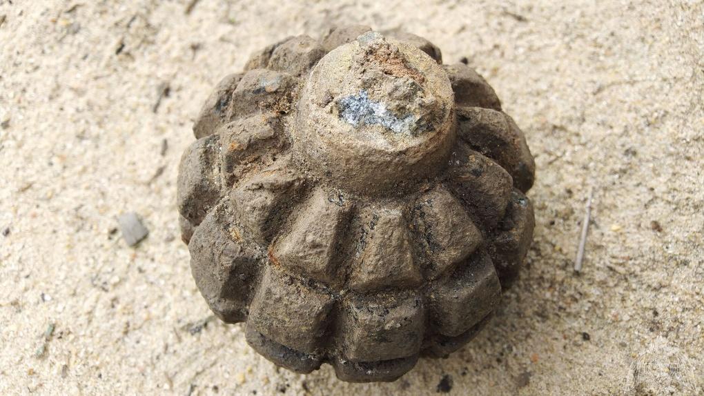 В Стрельцах обнаружили и обезвредили гранату Первой мировой войны