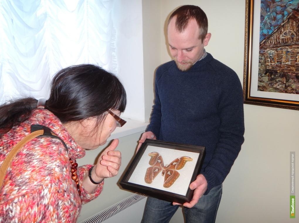 Тамбовчане могут увидеть самую крупную бабочку в мире
