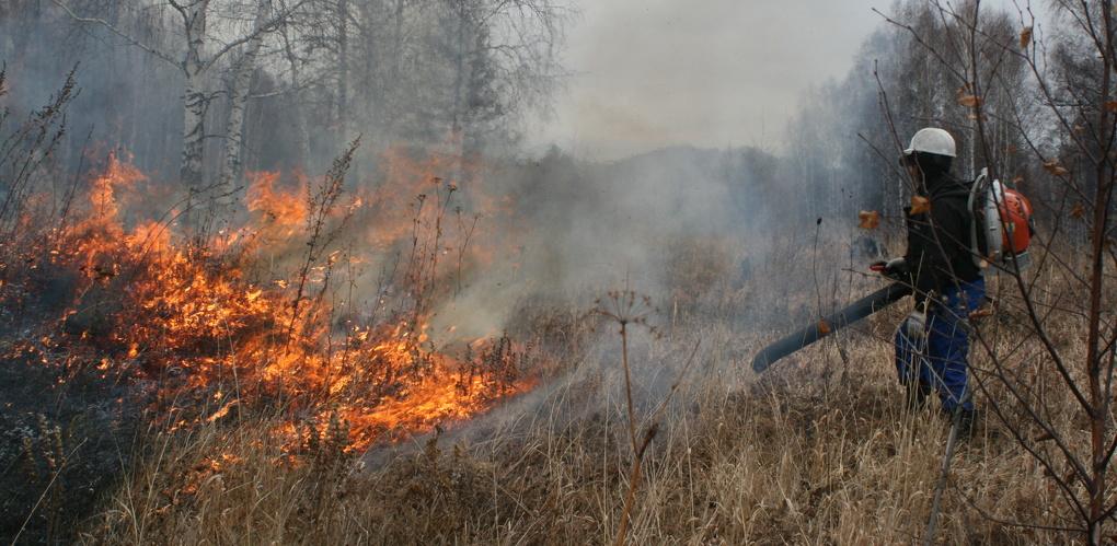 В Тамбове разработали специальные маршруты для тушения лесных пожаров