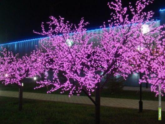 Мобильные деревья появятся в Тамбове
