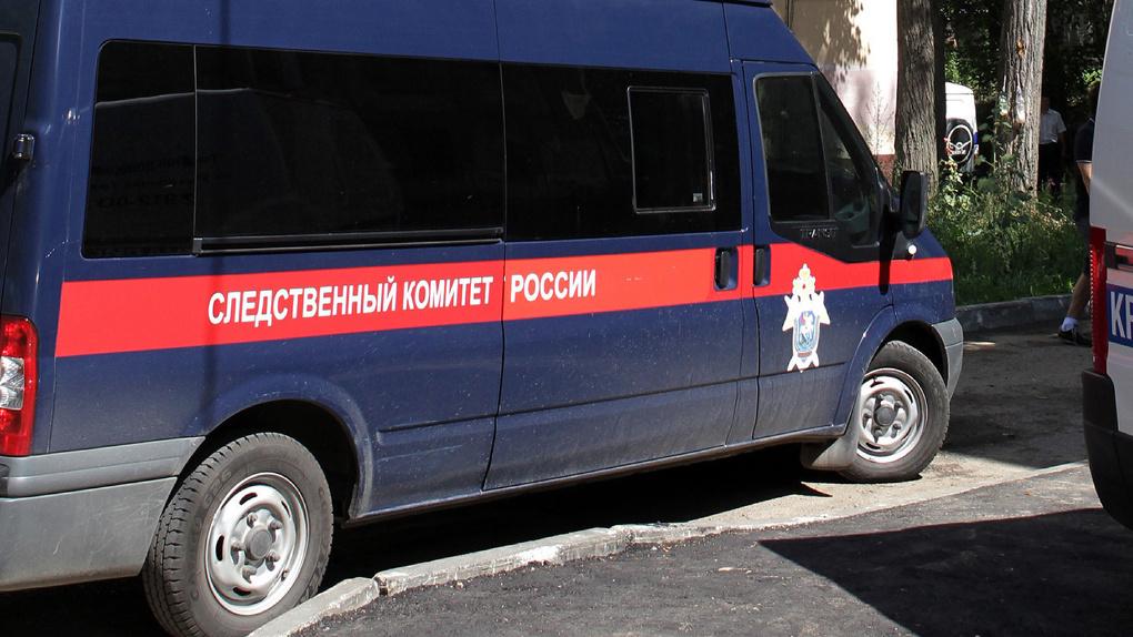 На Тамбовщине 19-летний житель шантажировал двух девочек их интимными фото