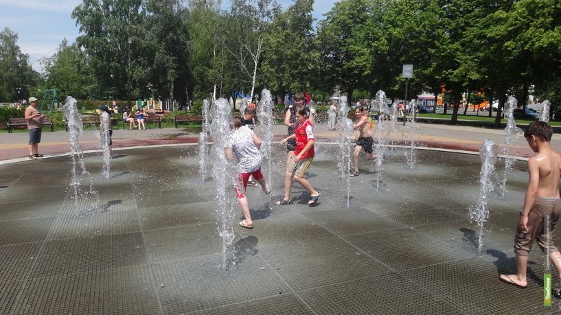 Синоптики предупреждают тамбовчан об аномальной жаре