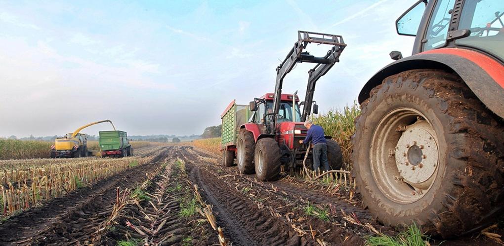 В Тамбовской области на поддержку фермеров потратят ещё 82 миллиона рублей