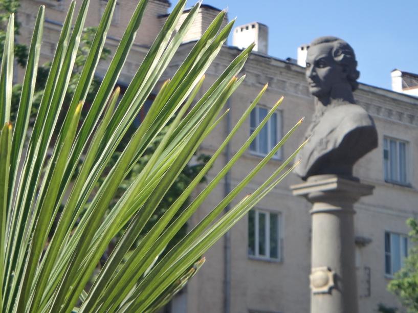 В центре Тамбова посадили пальмы