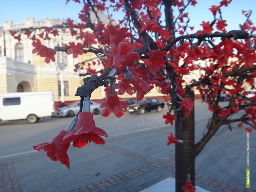 В период аномальных холодов в Тамбове «распускается» сакура
