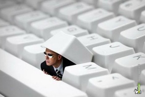 Соцсети помогут предотвратить ДТП в Тамбове